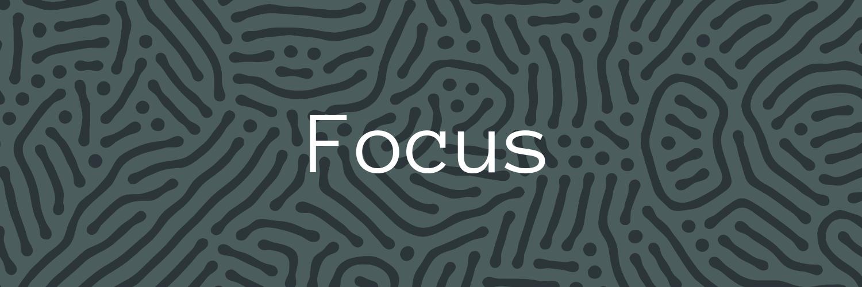 Forum-Fellowships-Focus