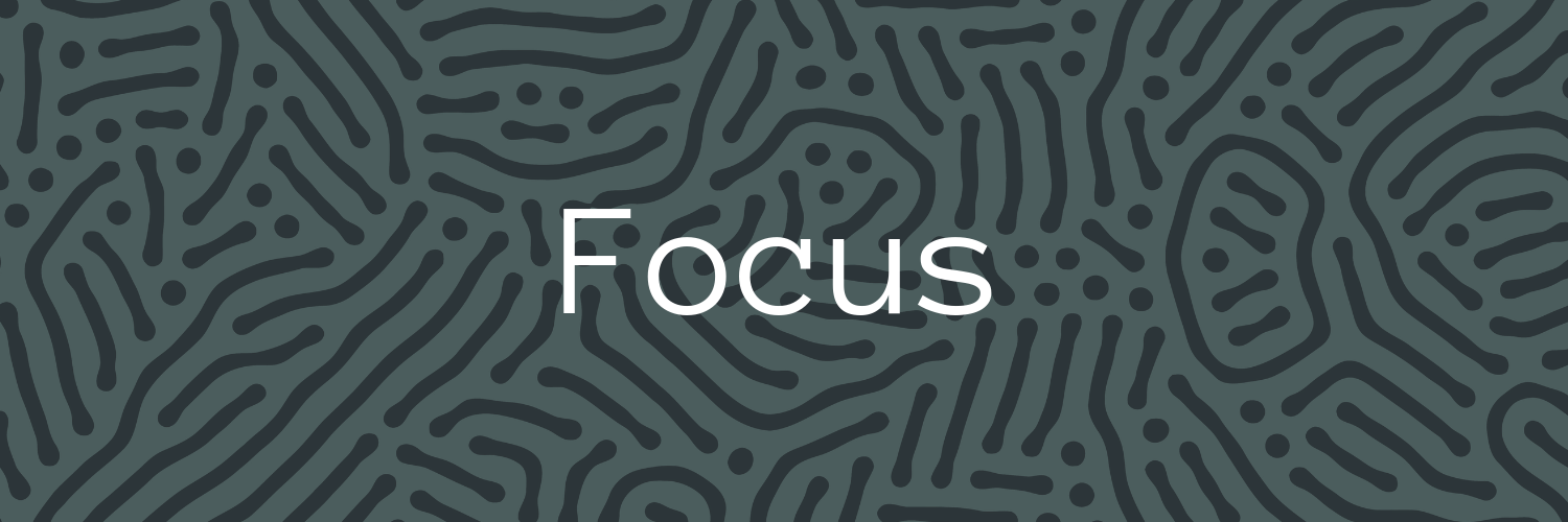 Forum-Fellowships-Focus